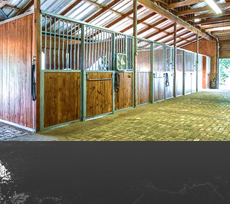 Equestrian Real Estate Homes with Land For Sale in TX