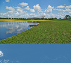 Lake, Pond, Homes with Land For Sale in TX - For Sale